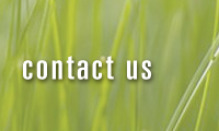 Contact MLA Landscape Architecture